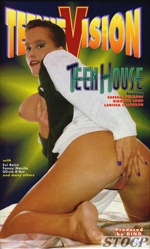 TeenieVision 4 - Teen House (1998)