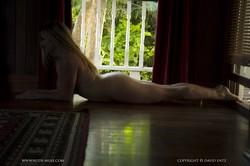La Luna - Wooden Floor