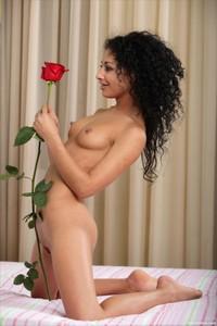 Isabella - Long Stem Rose  e6rneosaia.jpg